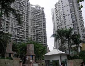 漾日湾畔-深圳房地产信息网