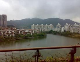 香蜜湖1号