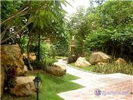 香樟绿洲实景图
