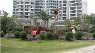 阳光海湾花园实景图