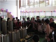 中海阳光玫瑰园项目现场