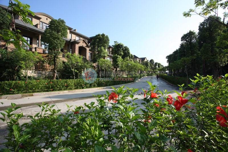莱蒙水榭山花园一期楼盘相册-深圳房地产信息网