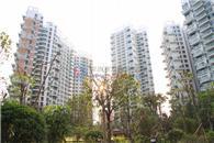 华联城市山林花园二期实景图