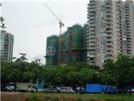 桐林公寓实景图