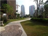 绿海湾花园实景图