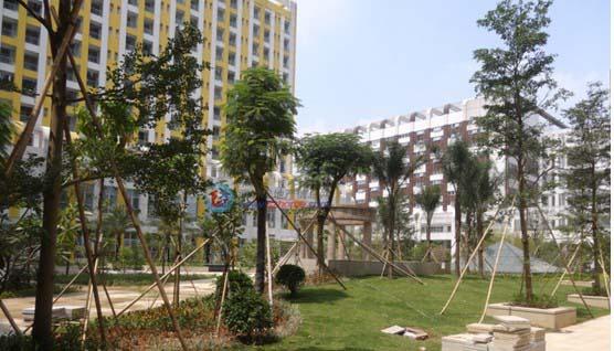 深圳市光明新区公明十大瑜伽机构盘点_教育指南_百度教育攻略
