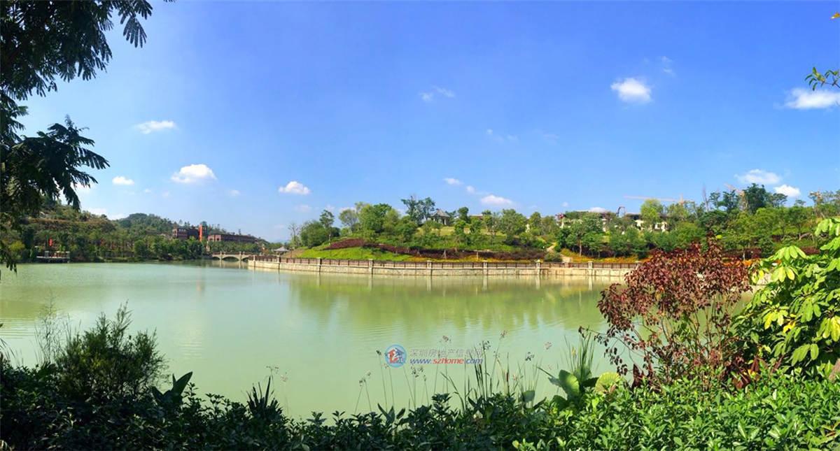 关于溪谷的风景图片