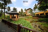惠阳恒大棕榈岛实景图