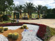 太东天地花园实景图