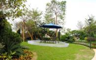 金茂绿岛湖实景图