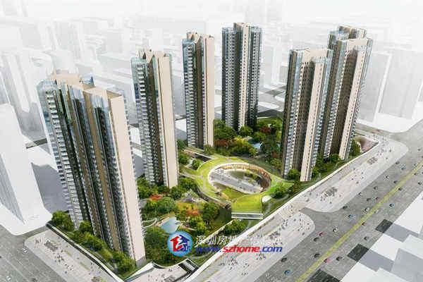 博林君瑞-深圳房地产信息网