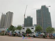 畔山悦海实景图